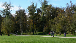 Autumn park(trees) - people walking (relax) - path - sunny Footage