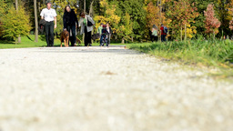Autumn park (trees) - people walking (family and friends) - pathway (shot from g Footage