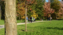 Autumn park (trees) - people walking (family and friends) - people sit on bench  Footage
