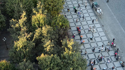 people walking on the street - aerial - park (trees) - urban street - horse carr Footage