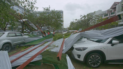 Broken Roofs Lie on Cars among Felled Trees after Hurricane Footage