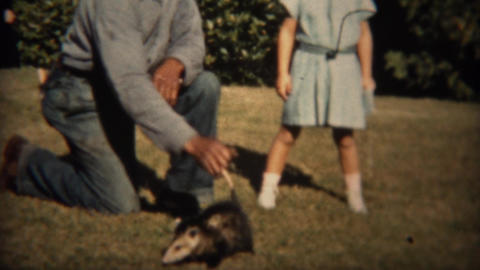 1937: Man carries wild opossum animal by tail with girl watching Footage