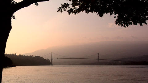 Lions Gate Bridge late Afternoon from Stanley Park Live Action