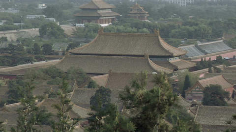 Over the Rooftops of the Palace Museum Live Action