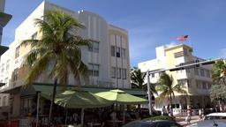 USA Florida Miami Beach vanilla colored hotels behind palm trees Footage