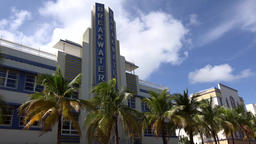 USA Florida Miami Beach Breakwater hotel behind a row of palm trees Footage