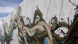 USA Florida Miami artful fantasy pictures on the Wynwood walls Footage
