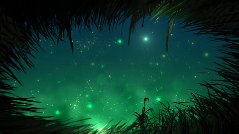 Grass at night with fireflies loop Stock Video Footage