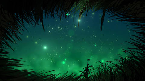 Grass at night with fireflies loop Animation