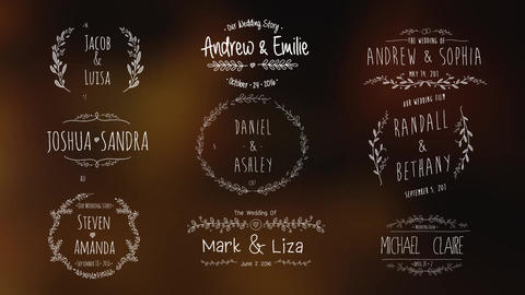 Wedding Vintage Titles Motion Graphics Template