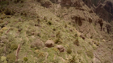 picturesque mountain landscape. ravine Mask of Tenerife Spain GIF
