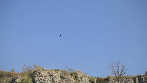 pair of birds soar high in the sky above the rocks. The concept of respect for Bild
