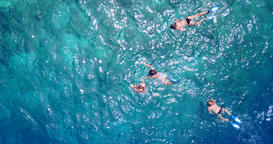 v11844 many people young boys girls snorkeling over coral reef with drone aerial Footage