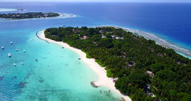 v11449 maldives white sand beach tropical islands with drone aerial flying birds Footage