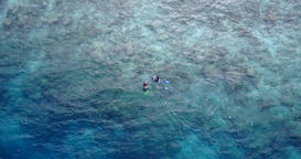 v11909 many people young boys girls snorkeling over coral reef with drone aerial Footage