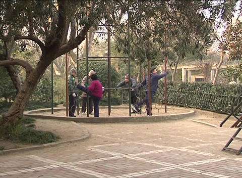 Elderly exercises in Shanghai park Stock Video Footage
