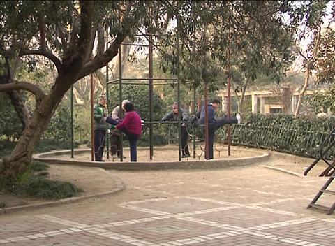 Elderly exercises in Shanghai park Stock Video Footage