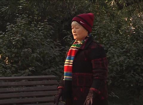 Old lady stretching in park Stock Video Footage