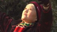 Old Lady Stretching In Park stock footage