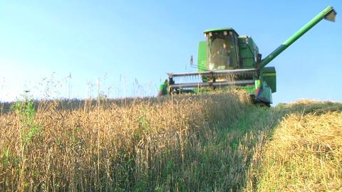 Farmer Combining Wheat Stock Video Footage