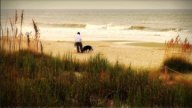 1004 Dogs And Beachcomber On The Beach Early stock footage
