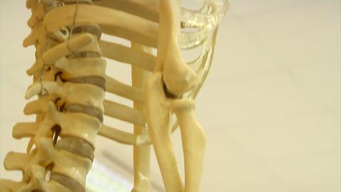 Giant skeleton statue Stock Video Footage