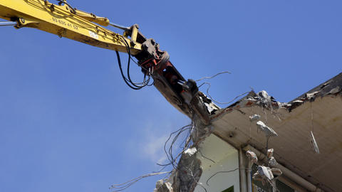 crane munching06 Stock Video Footage