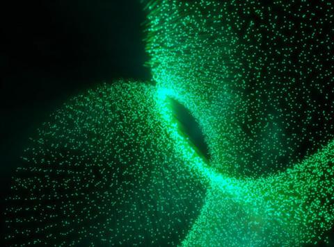 3D Particles Green : VJ Loop 139 Stock Video Footage