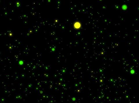 Particles : VJ Loop 359 Stock Video Footage