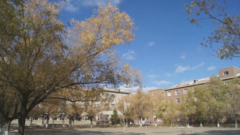 Autumn campus view Stock Video Footage
