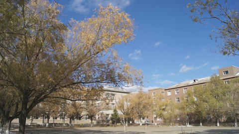 Autumn campus view Footage
