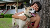 Asian Woman Exercise Her Dog stock footage