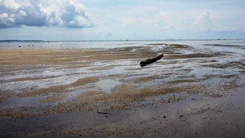 low tide Stock Video Footage