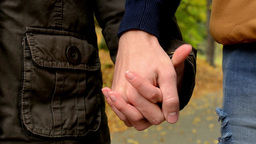 young model couple in love - autumn park(nature) - couple holding hands (closeup Footage