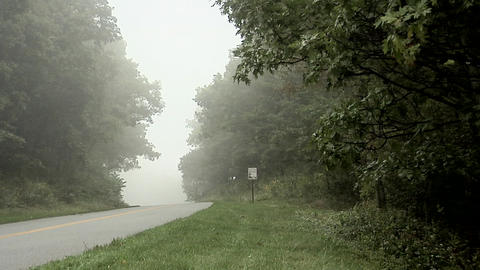 Heavy Fog along the Blue Ridge Parkway in North Carolina Live Action