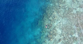 v11906 many people young boys girls snorkeling over coral reef with drone aerial Footage