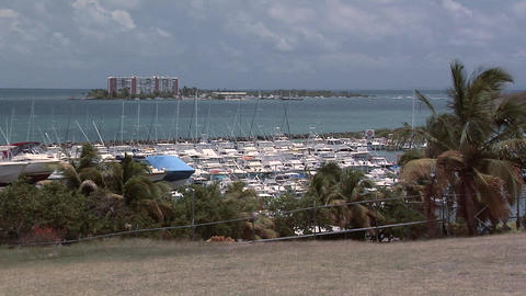 The Yacht Club at Fajardo Live Action