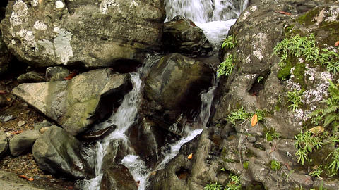 La Coca Waterfalls at El Yunque National Forest Footage