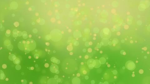 Green yellow bokeh lights background Animation