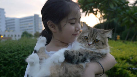 4K : Lovely Asian girl plays with her Persian cat in the park Live Action