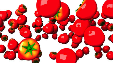 Tomatoes On White Background Animation
