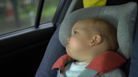 Chewing baby sits in a safety chair on the back seat of automobile Footage
