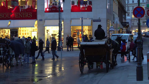 Vienna, Austria - November 2017: Horse and carriage carrying tourists visiting Footage
