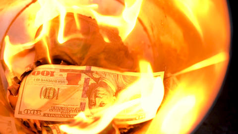 Burning dollars in the trash can close-up and a man throws new bills into the Footage