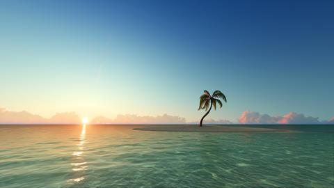 One palm tree on sunset island 3D render Fotografía