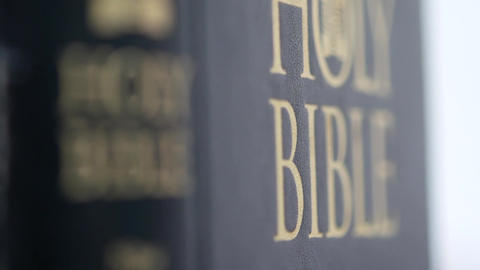 Looking for Holy Bible Archivo