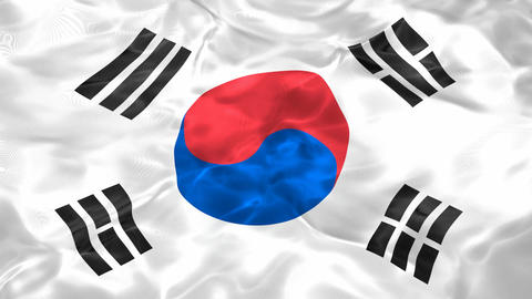 Flag of the South Korea 3D looping animation Animation