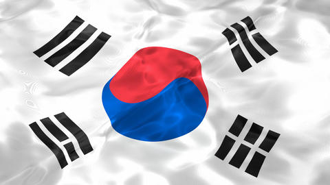 Flag of the South Korea 3D looping animation Stock Video Footage
