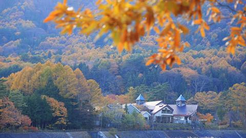 Onsen (hot spring) in autumn ライブ動画