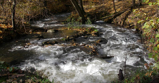Pure fresh water waterfall in autumn forest Footage